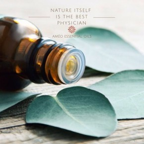 Where to Begin with EssentialOils